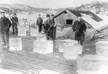 Men handling ice blocks with 'ice tongs', hinged in the middle